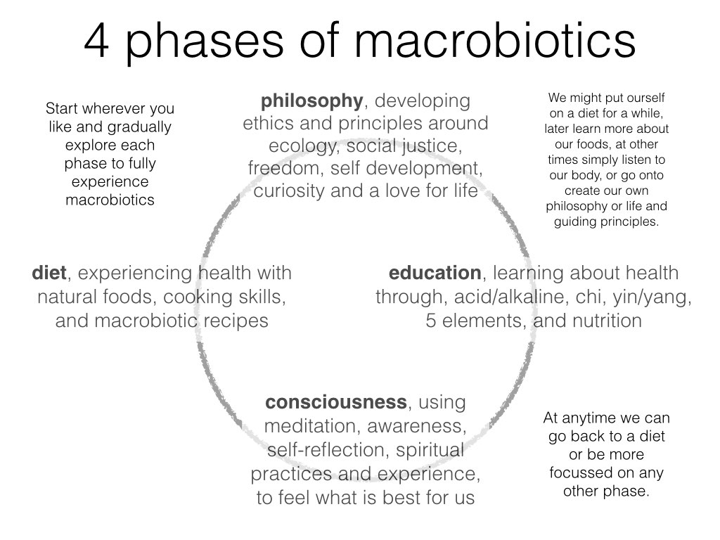 Macrobiotic Training London 4 Phases Chart