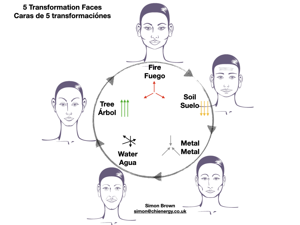 five element face reading